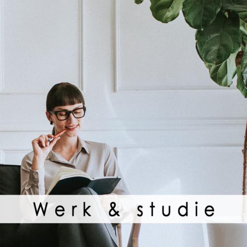 Werk & studie